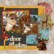 Deer At Play