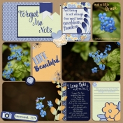 Forget Me Nots- part 1