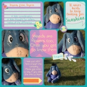 Lessons from Eeyore