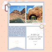 Tourist | Sahin Designs