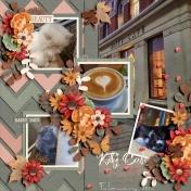 Kitty Cafe February 2020-2