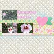 Endurance Blooms