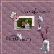 A Beautiful Memory