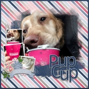 Pup Cup