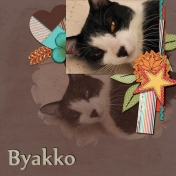 Byakko (2013 layout)