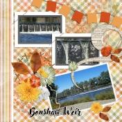 Bonshaw Weir QLD