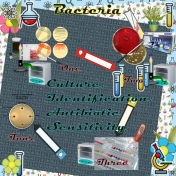 Elementary Bacteriology