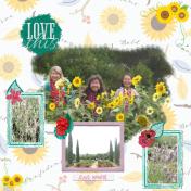 Sunflower Girls