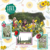 Sunflower Girls MK2