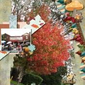 Autumn in Burrawang, Southern Highlands