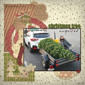 Christmas Tree Acquired (DDP19)