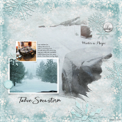 Tahoe Snowstorm- AL