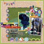 Eight Weeks Old- AL