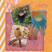 Nature's Palette