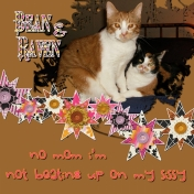 BEAN AND RAVEN challenge boo kit nov 30