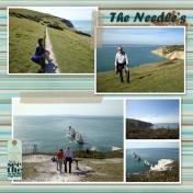 The Needle's