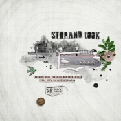 Stop and Look