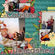 cousins unleashed