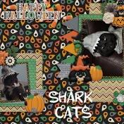 shark cats