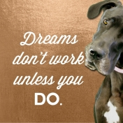 Abi Says: Dreams