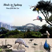 Taronga Zoo in Sydney, Australia, 2007 pg 3