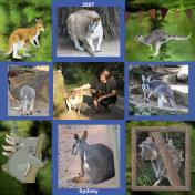 Taronga Zoo In Sydney, Australia, 2007, pg 8