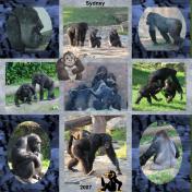 Taronga Zoo In Sydney, Australia, 2007, pg 9