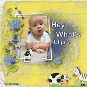 Hey, What's Up?