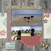 20130613_Wild Mustangs_01