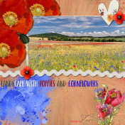 Landscpe with poppies and cornflowers