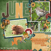 June- Nature is calling