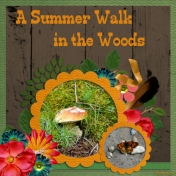A Summer Walk in the Woods