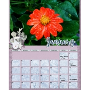 calendar 41