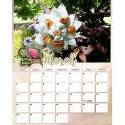 calendar 43