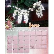 calendar 46