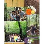 mangrove 1