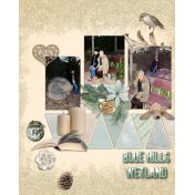 blue hills wetland