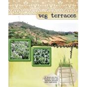 vegetable terraces
