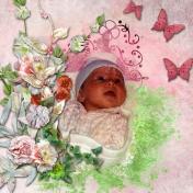 Precious Pink 1