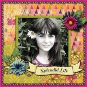 Splended Life