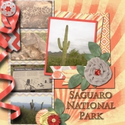 Saguaro National Parkk