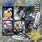 The Moody Gardens Rainforest 2