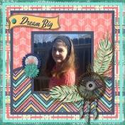 Dream Big & Fly