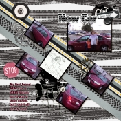 Family Album 2004: New Car