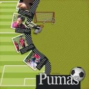 Family Album 2006: Pumas