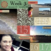 Project 365: Week 3, Page 1