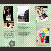 Project 365: Week 6, Page 2