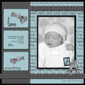 Project: Scraplift (Myself) Ashton Baby Book, Title Page (Digital) TWEAKED