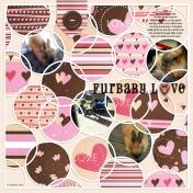 Family Album 2015: Furbaby Love