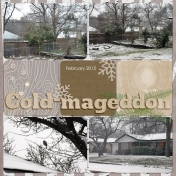 Family Album 2015: Cold-mageddon